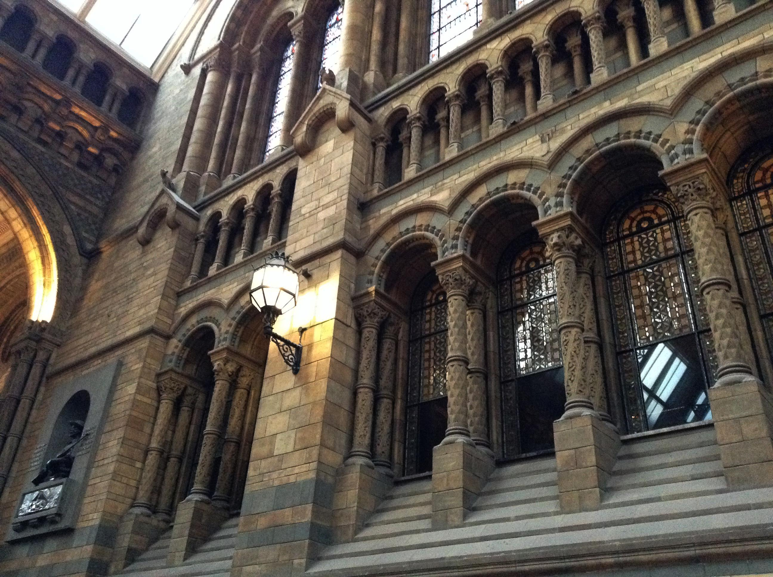 Музей естествознания в Лондоне