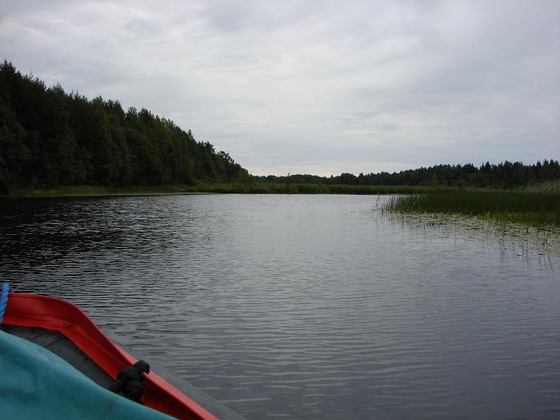 река y_a75c20da
