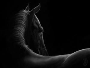 Конь, что СМОТРИТ, - не просто конь, а ПОСЛАННИК БОГОВ. Об этом знали наши прапредки. Об этом забыли мы.
