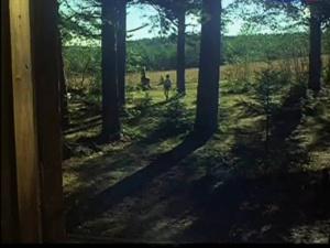 Мать (молодая) подходит к окну и видит сидящую на пеньке Женщину, явно в возрасте, к которой бежит маленький Алеша...