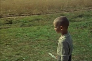 Алеша в поле с птичьим пером в руке - не воробьиным. Он идет к Матери. Он сейчас ее настигнет. Она уже не та. Он оболочки телесной не видит: он видит ее душу, что не изменилась, ибо Мир теней - на Мир реалий...