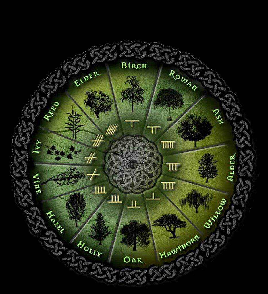 Друидский зодиакальный круг