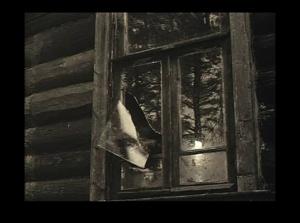 Окно в доме деда, где родился Алексей...