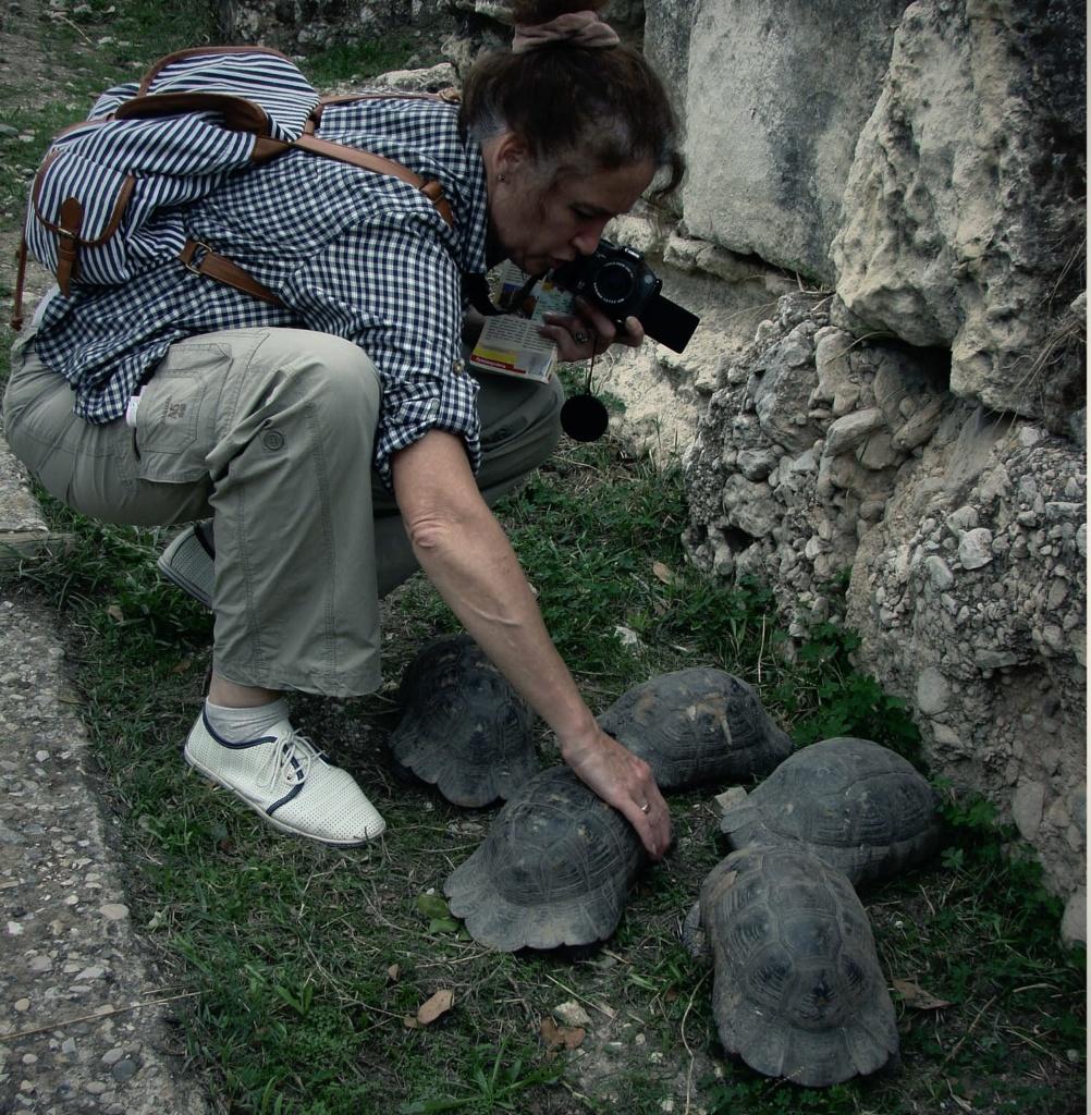 Алла Генриховна принялась уговаривать черепах успокоиться.
