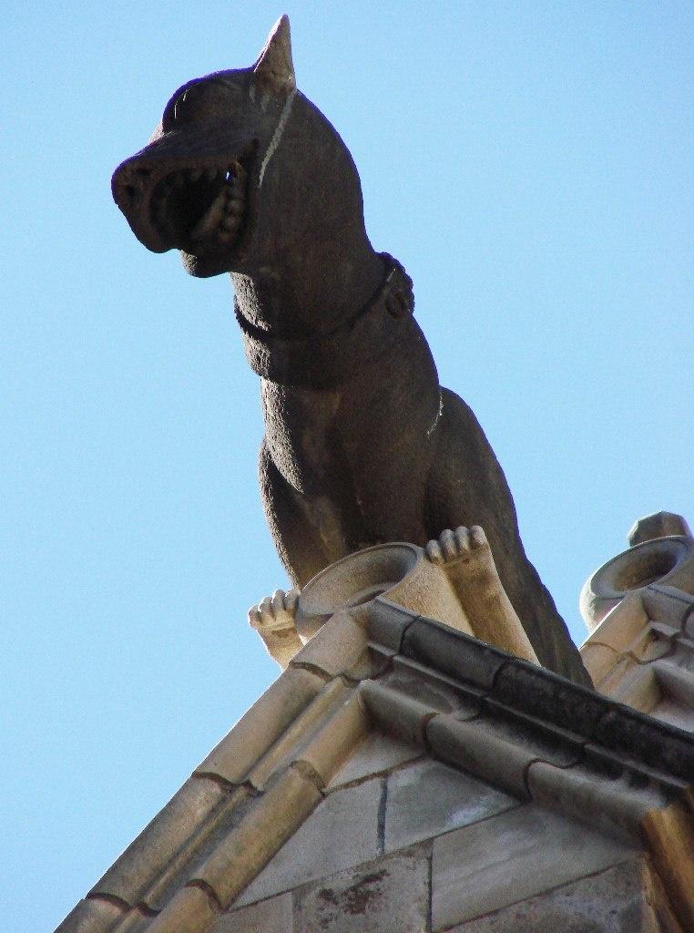 """Горгульи Кафедрального собора в Барселоне. XV век. Собака - образец """"окаменелой нечисти"""": земное существо, в христианстве означающее верность, бдительность, охрану..."""