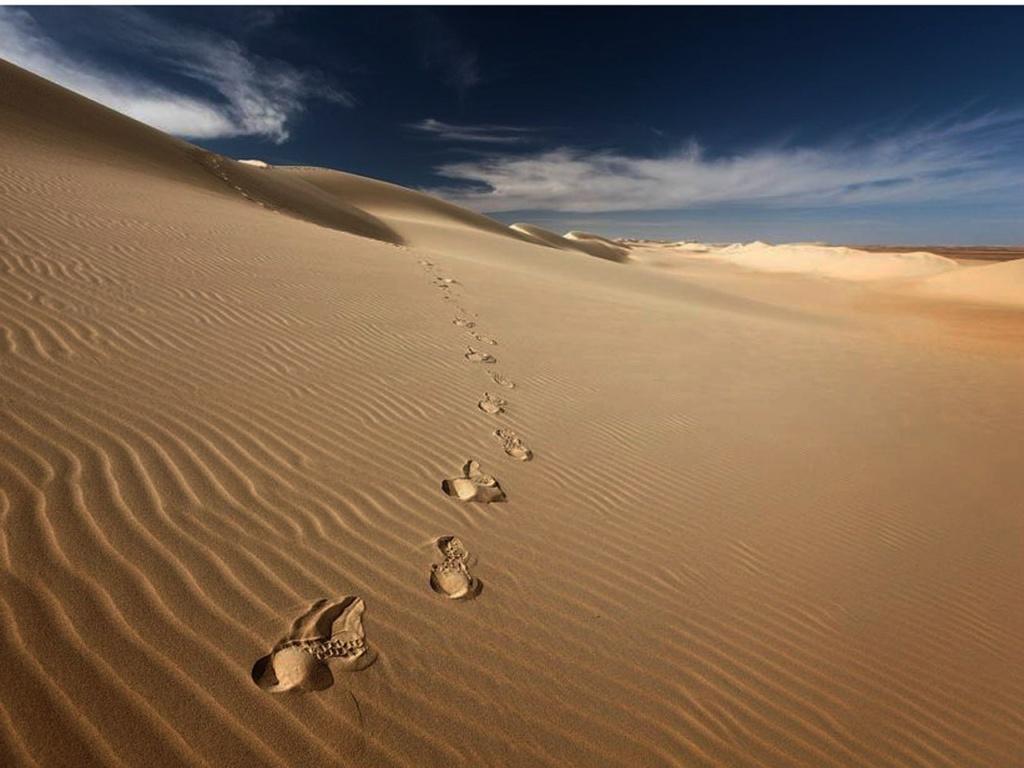 Средний Египет. Ливийская пустыня - безжизненная, ибо нельзя жить там, где ветер песок развеивает. Следы копыт верблюдов, уходящих за горизонт...