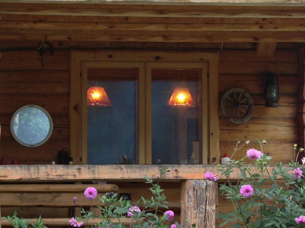 Деревянный двухэтажный дом, в котором мы жили большую часть истекшего лета...