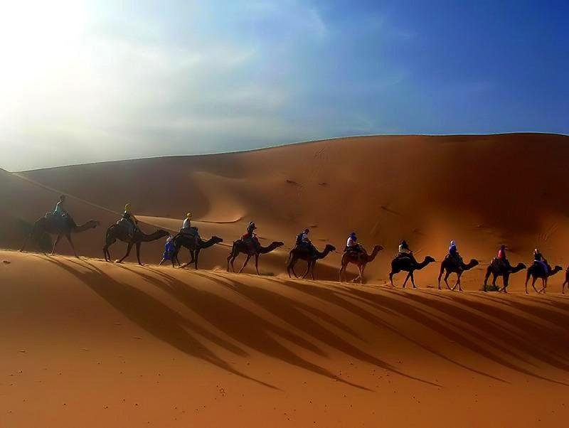 Средний Египет. Ливийская пустыня, что и сегодня предлагает лучший способ движения. Караваны верблюдов по пескам плывут - отмеривают ход отпущенного людям времени.
