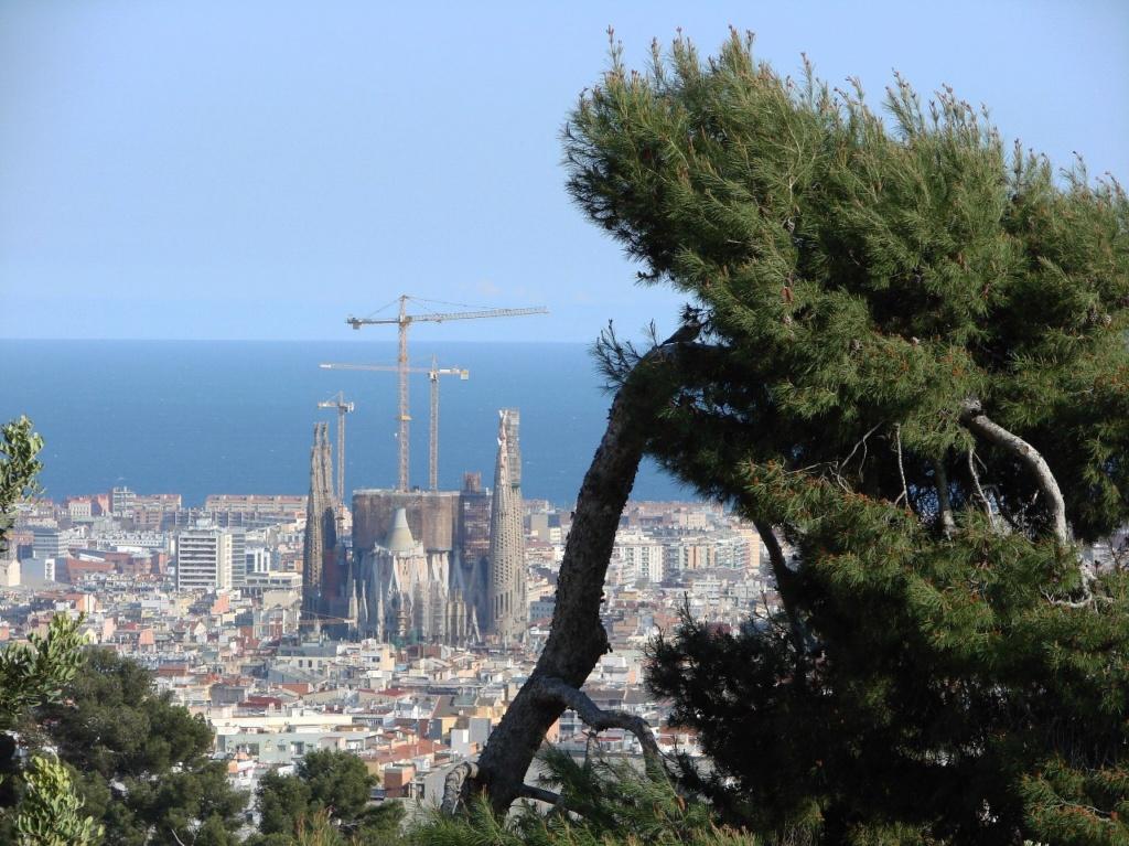В Барселоне - ГОРОДЕ ЖИВОМ - действуют 4 координаты: 3 пространственных, 1 временная...