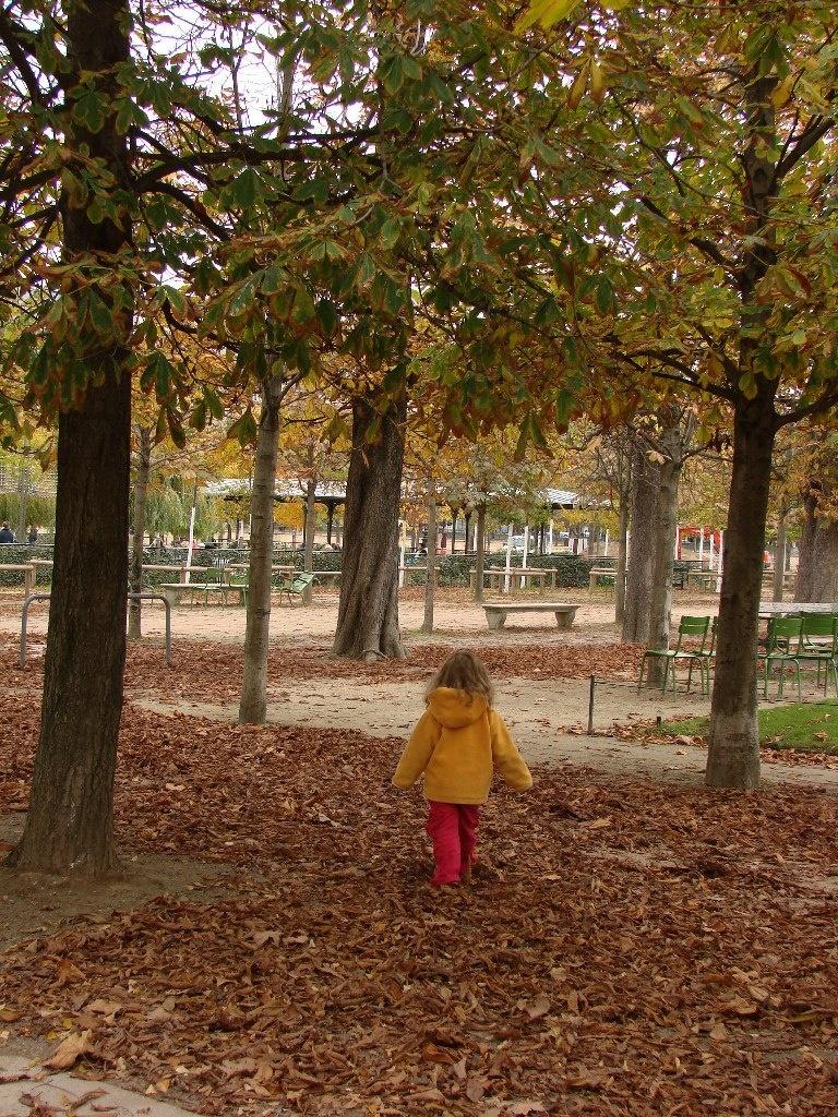 Парк Тюильри для отдыха в нем детей и взрослых...