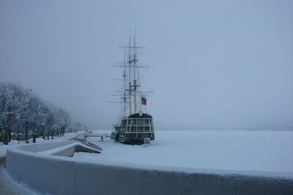 Вид с Троицкого моста на Петровскую набережную. На дальнем плане можно (тому, кто знает) различить силуэт еще одного большепролетного моста Петербурга - Литейного.