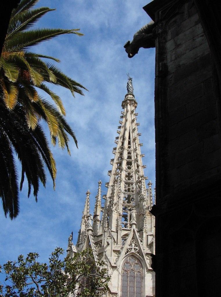 Клуатр в Кафедральном соборе Барселоны, где есть прекраснейший пальмовый сад (без попугаев)...