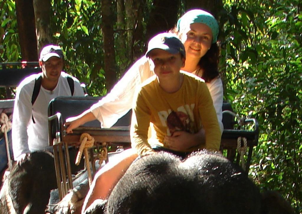 Терпело колючесть шерсти, покрывающей и взрослых слонов...