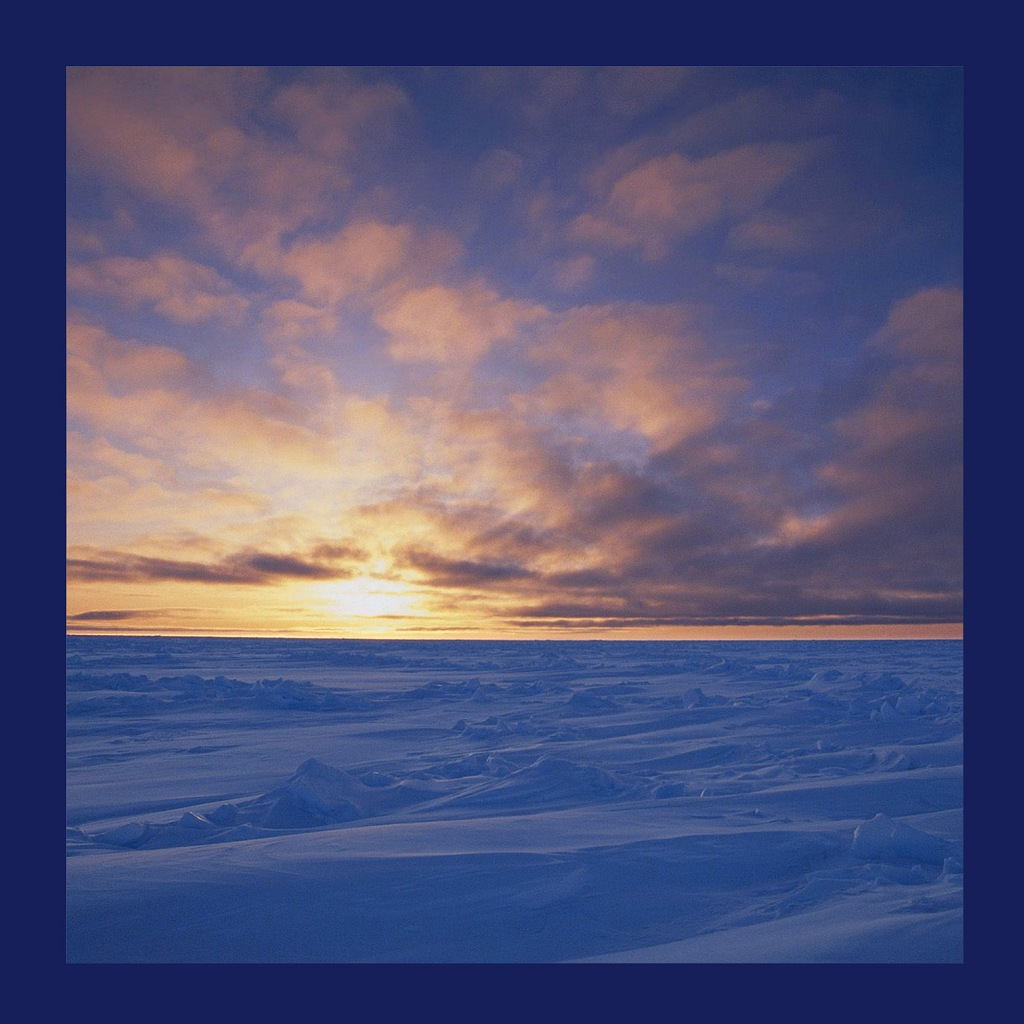 Арктика - ледяная пустыня