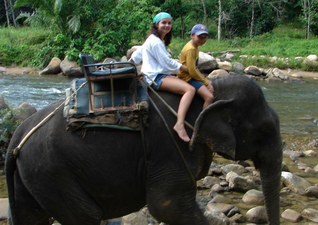 Слоны шли и шли, молча и сурово...