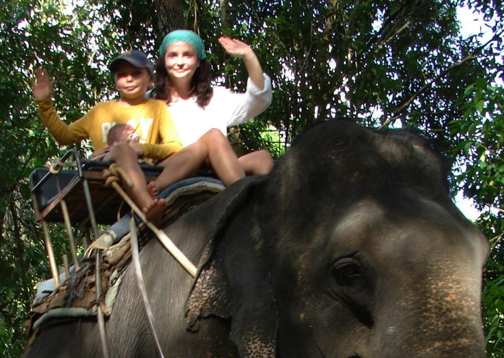 Я спросила? Глаза у слонов очень маленькие? Ответ: что ты, они такие выразительные - говорящие...