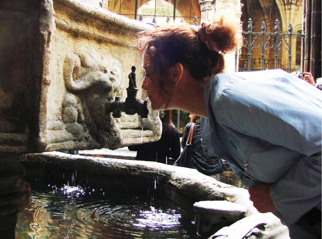 Клуатр в Кафедральном соборе Барселоны. Фото М. Бреслав: Алла Кольцова причащается...