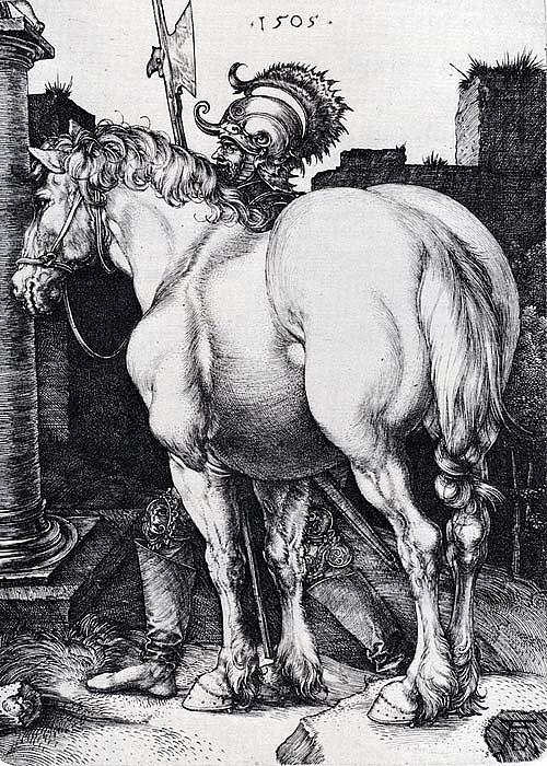 """Альбрехт Дюрер. """"Большая лошадь"""". 1505"""
