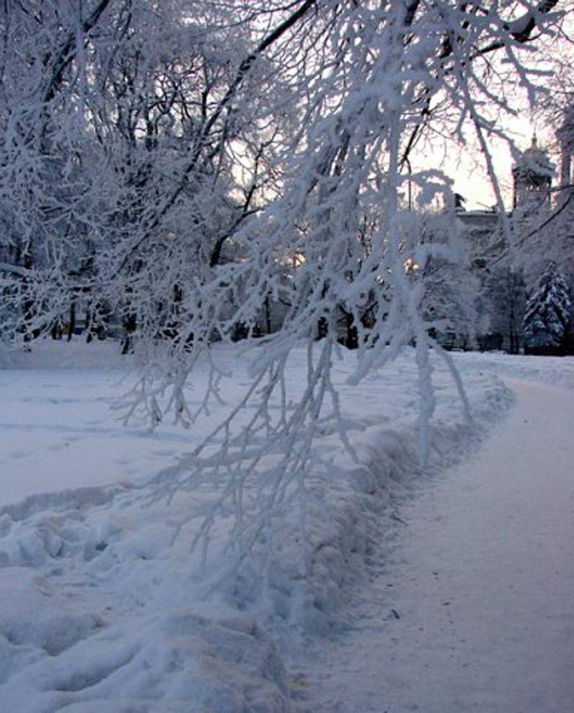 Зимний сумеречный вечер наступает, Город своим впечатлениям подчиняя...