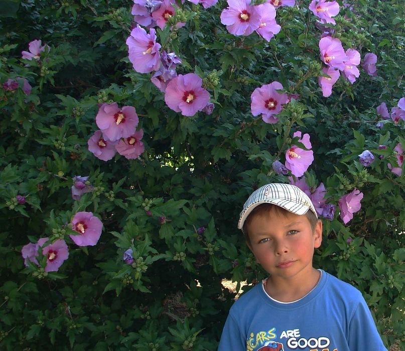 Девчонкам нравятся цветы, его с трудом сюда заманили...