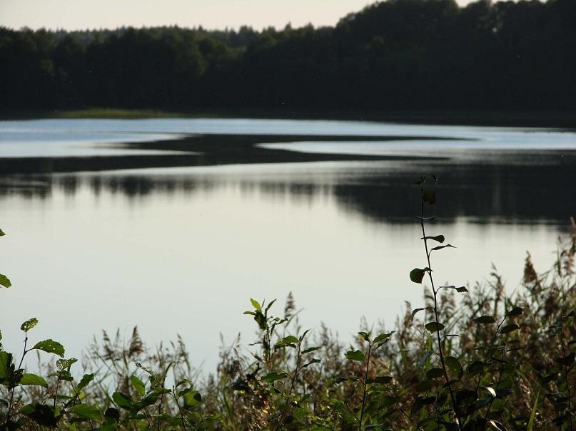 Пока молодые плавали по грибы и ходили, я предавлась созерцанию мест окрестных - озера Масельки прекрасного...