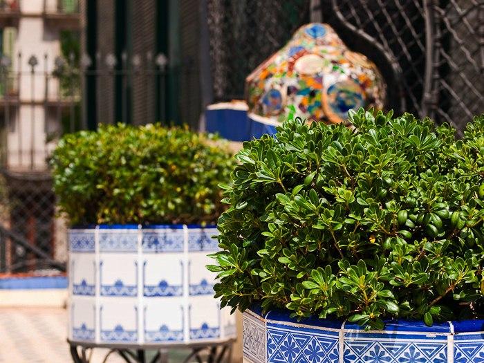 """Барселона. Каса Бальо. Антонио Гауди. 1906 год.. Вид на террасу дома в должном озеленении. Это """"Каменный сад""""? Нет, конечно же, Райский...."""