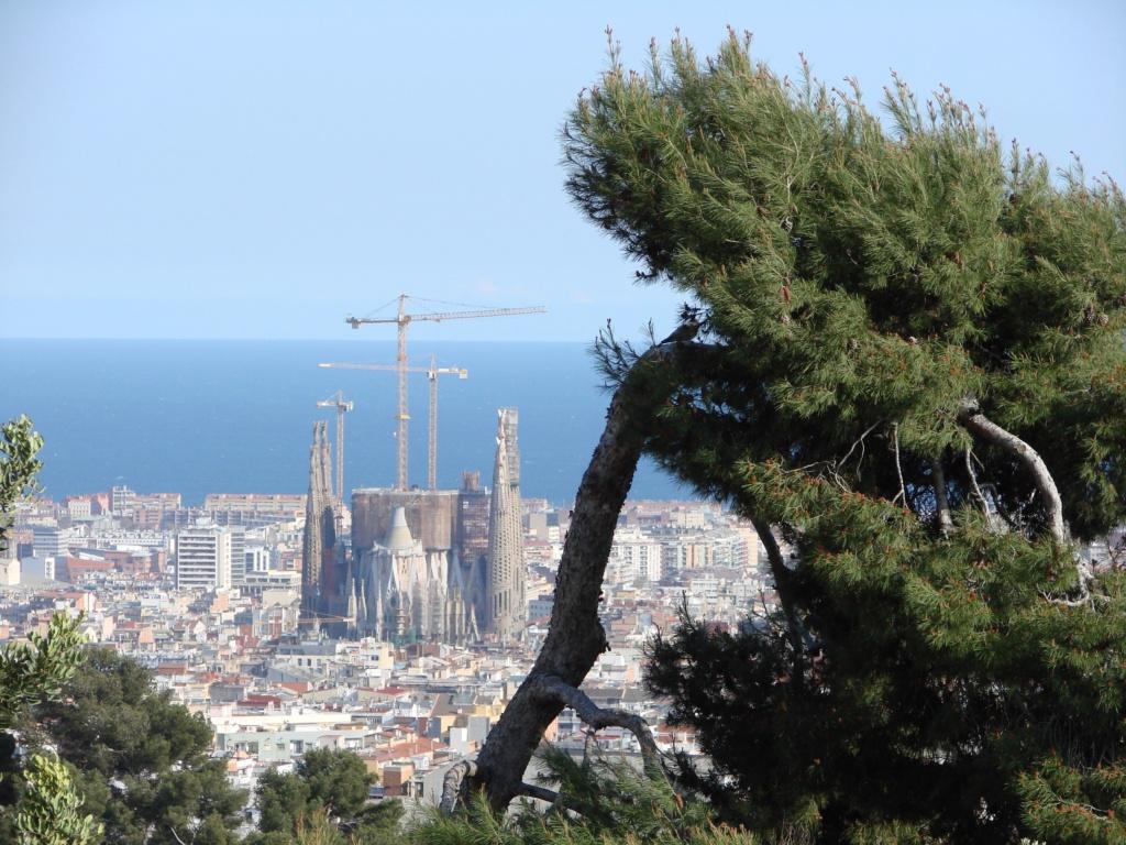 Вид с террасы Парка Гуэля на Барселону, еще и сегодня строящуюся Саграду Фамилия и Средиземное море...