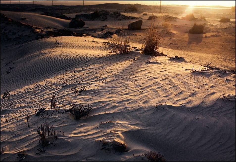 Средний Египет. Ливийская пустыня, в которой ветер развеивает песок.