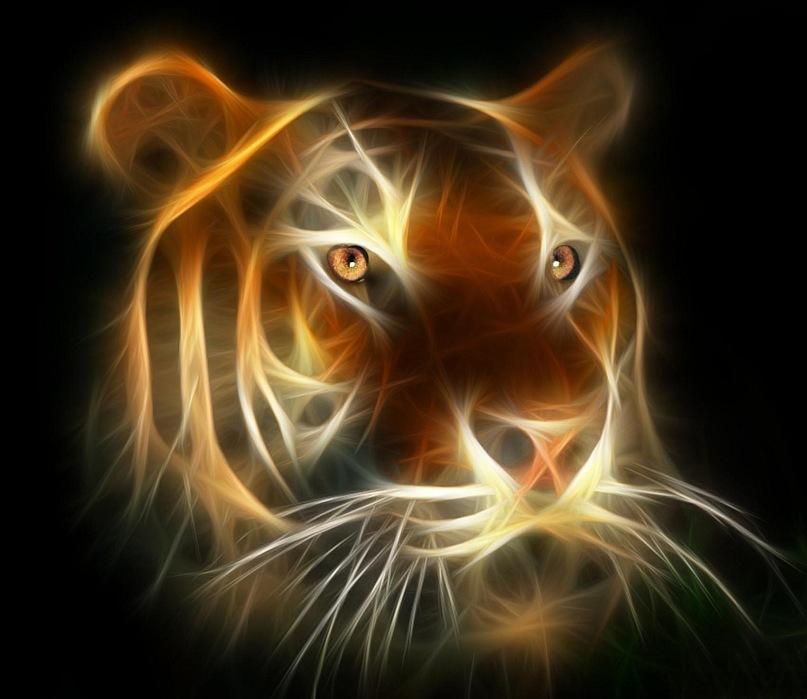 """Под влиянием встречи с незнакомцем, похожим на Вакха, Ашенбах увидел """"искрящиеся огоньки - глаза притаившегося тигра, - и сердце его забилось от ужаса и непостижимого влечения"""". Влечения к чему? К смерти?.."""