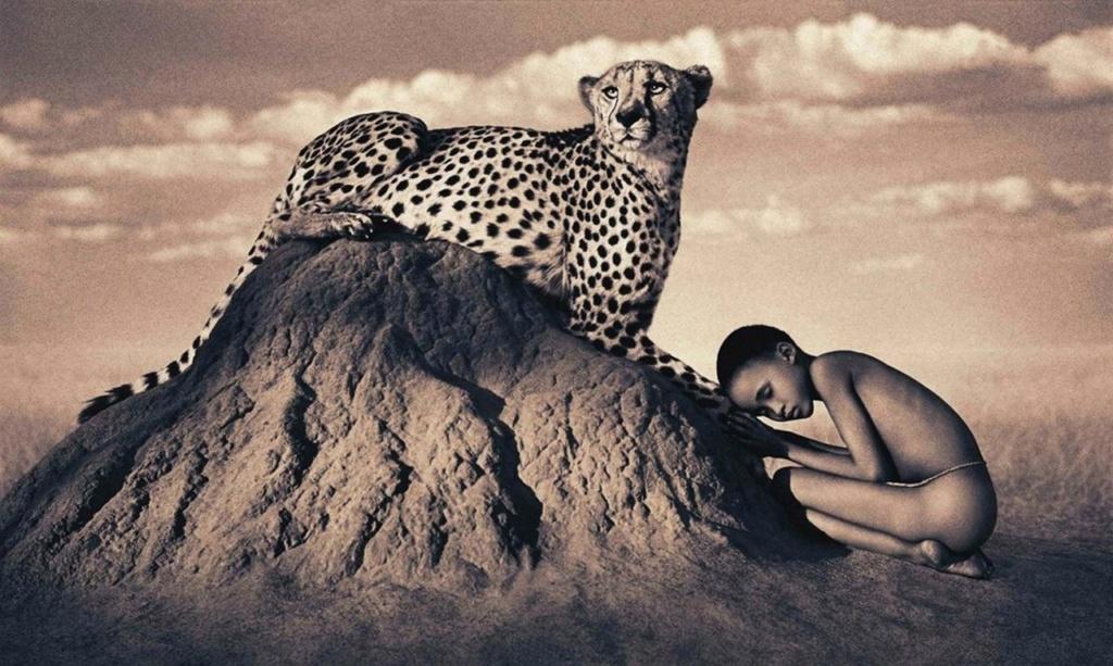 """Рецензия... """"Мистерия, каждый кадр которой в своей абсолютной завершенности открывает заново и показывает бесконечную красоту этого мира и живущих в нем людей и животных""""."""
