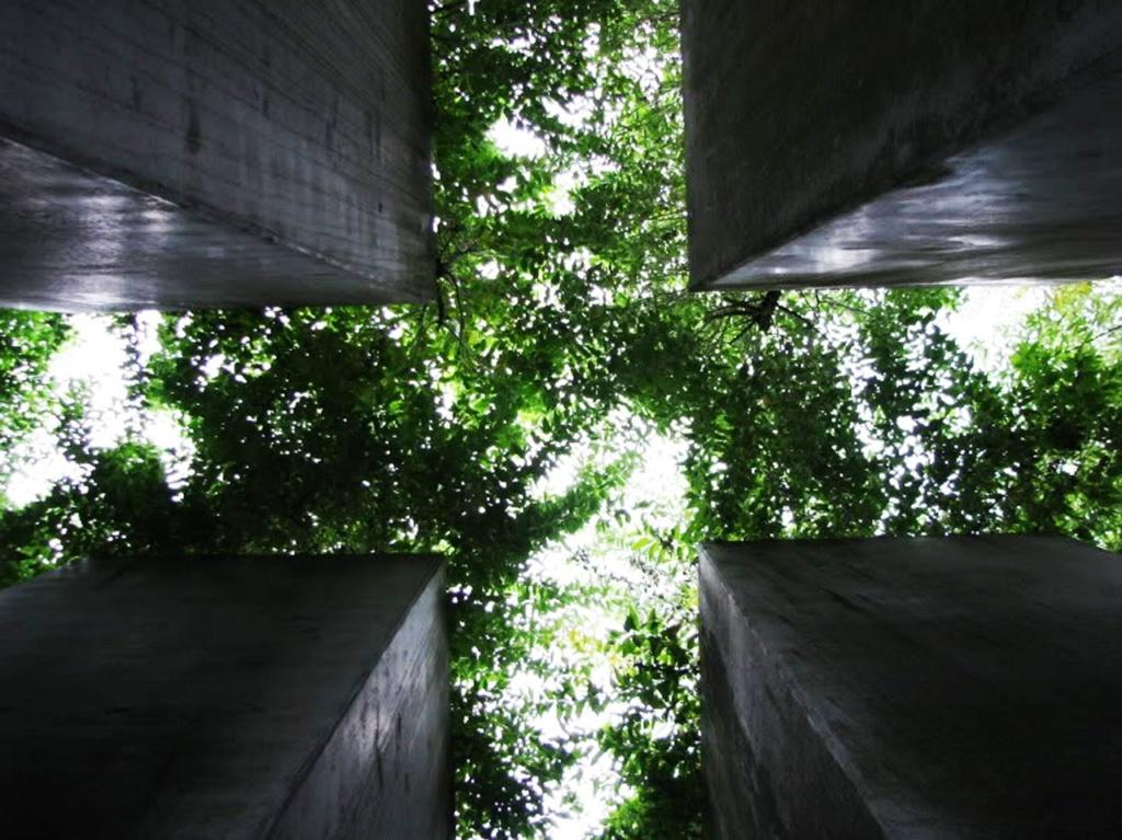 """Берлин. Еврейский музей. """"Сад Изгнаний"""" зазеленел. Фото из Интернета."""