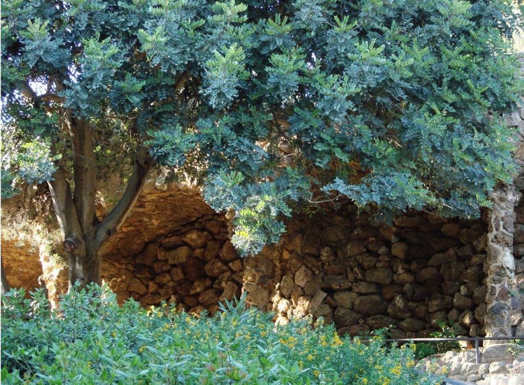 """Парк Гуэля. Средний (""""виадук Прачки"""" и """"виадук Дерева"""") — в стиле барокко. Архитектурный ландшафт буквально потрясает зачаровывающей игрой светящейся зелени на фоне камня в тени..."""