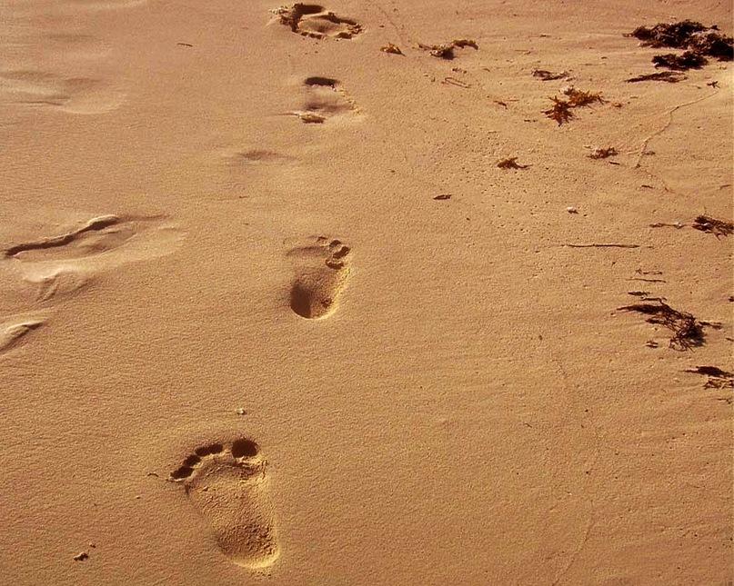 Детские следы на золотисто-песчаном берегу моря...