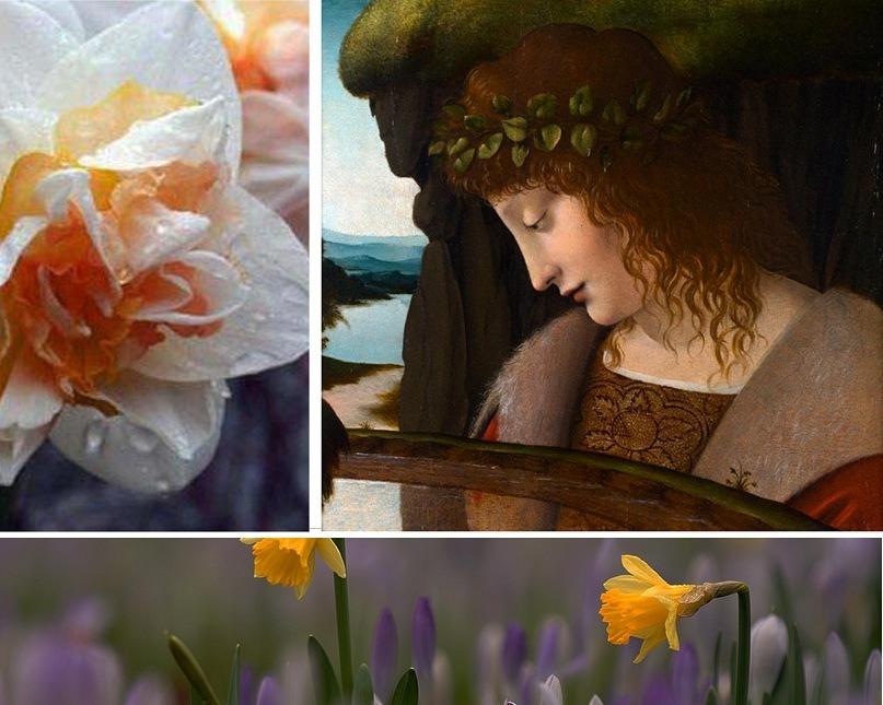 """""""Нарцисс у ручья"""". Джованни Антонио Больтраффио (ученик Леонардо да Винчи). 1467 — 1516."""