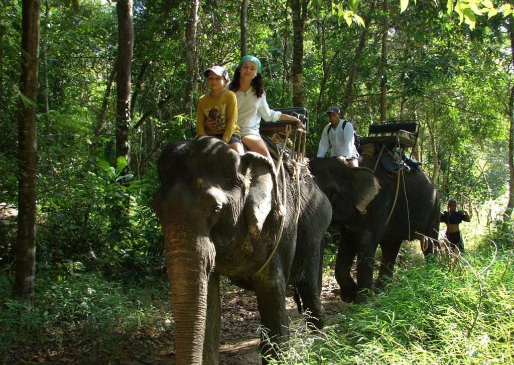 Ехать на слонах сложно - они качаются из стороны в сторону...