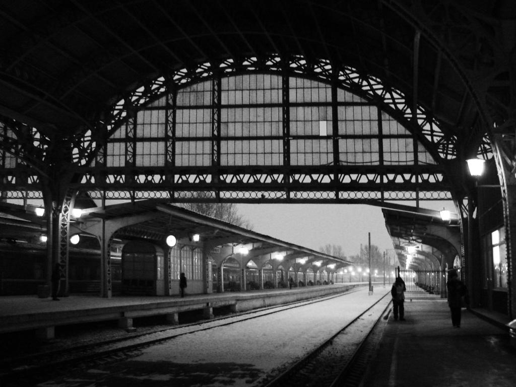 Дебаркадер Витебского вокзала, имеющий арочное перекрытие. Автор — инженер В. С. Герсон.