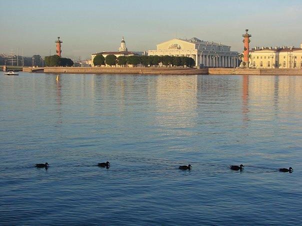 Вид на Стрелку Васильевского острова в Белую ночь. 5.00 утра...