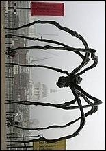 Гигантский паук появился на улице Лондона 3 октября 2007